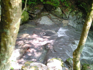 山梨県道志村・的様の滝